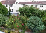Garten-20200617_183158